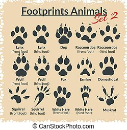 Footprints Animals - vector set. - Footprints Animals -...