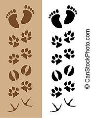 Footprints - Assortment of 6 different sets of footprints, ...
