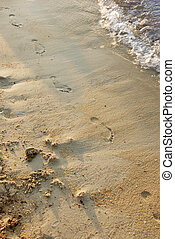 footprints in a sand