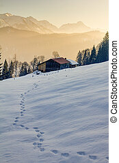 Footprints in snow towards wooden cabin in mountains of Allgau