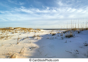 Footprints in the Sand Dunes at Dusk - Beautiful shades of...