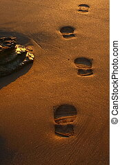 footprints in the sand - Footprints in the sand at sunrise