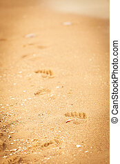 footprints in the sand on beach