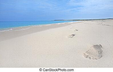 Footprints in the sand on Boca Grandi beach, Aruba