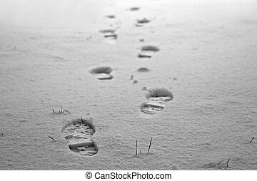 Footprints in the snow - Human footprints on white snow in ...