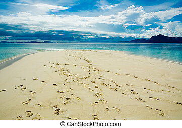 footprints in the tropical beach