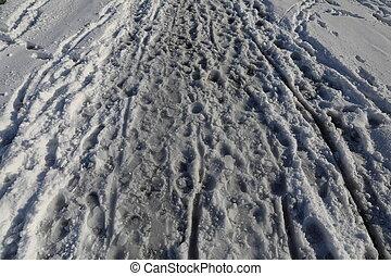Footprints in the winter