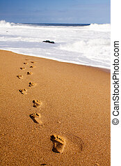 Footprints leading into the sea