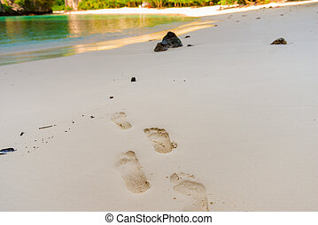 footprints on a wet sand beach in a tropical close-up