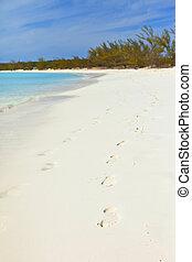 footprints on beach in bahamas - footprints on tropical...