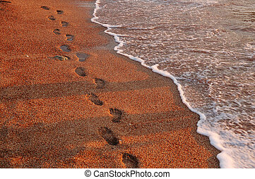 Footprints on sand along the coast
