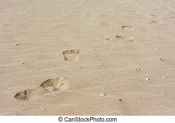 Footprints on the sand at the beach