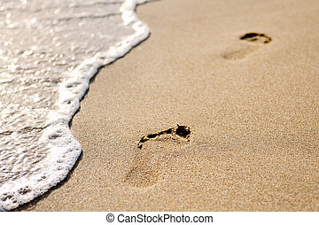 footprints on the sand of beach