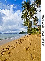 Footprints on Wild Deserted Beach