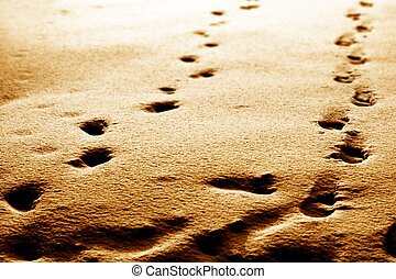 footprints abstract background blur and sharp