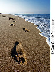 Footsteps at a Cape Cod Beach. - A walker's prints left ...