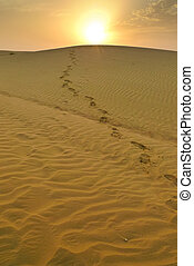 Footsteps from the sun