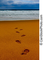 Footsteps in wet sand in a line towards the sea