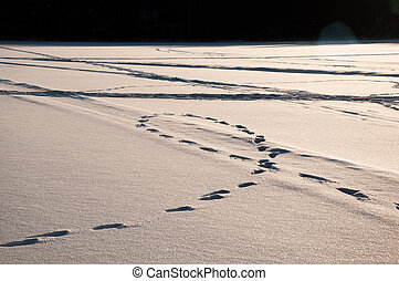 Footsteps tracks on the snow at the frozen lake.