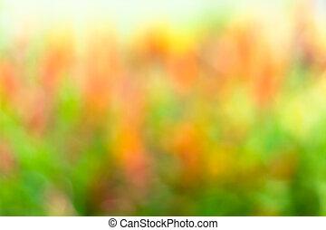 forår, abstrakt, farverig, baggrund