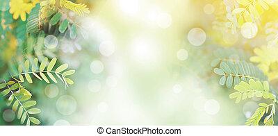 forår, blade, tropisk, baggrund., grønne, banner