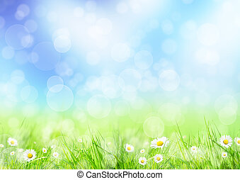 forår, eng