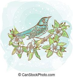 forår, -, illustration, hand-drawn, vektor, fugl