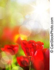 forår, kunst, baggrund