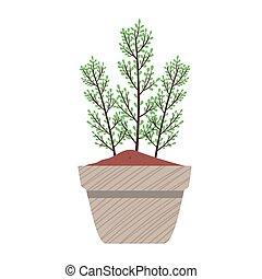 forår, pot plant, gråne, keramik, natur, ikon, sæson, hus