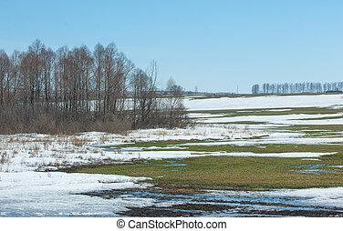 forår, sidste, sne, vinter