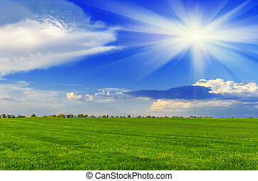 forår, solfyldt dag