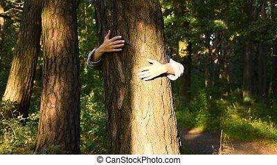 forêt, adulte, caucasien, ambiant, coffre, autour de, étreindre, mains, arbre, nature., woods., écologiste, femme, activiste, emballé, aimer