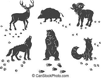 forêt, animaux, icônes, traces, ensemble