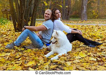 forêt automne, couple, jeune, chien