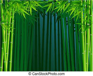 forêt bambou, fond
