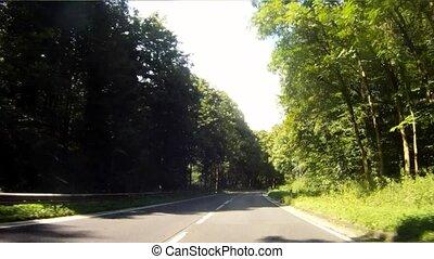 forêt, conduite