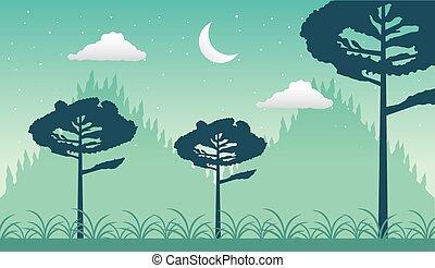 forêt, croissant, wandelust, lune, scène, paysage