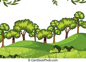 forêt, gabarit, nature
