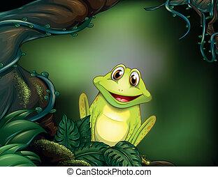 forêt, grenouille