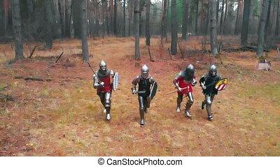 forêt, jour, knightes, quatre, tenue, hommes, entiers, -, temps, rang, épées, armure, courant
