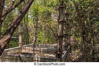 forêt, jungle, arbres, construction, pont, sous, vert