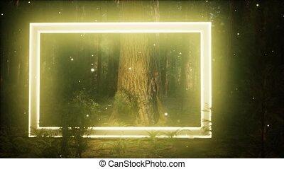 forêt, néon, nuit, incandescent, cadre, rectangle