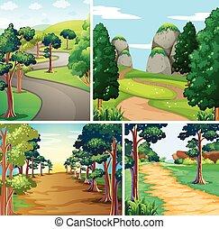 forêt, nature, routes, scène