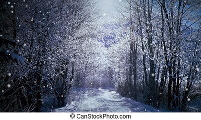 forêt, neige
