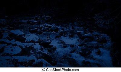 forêt, nuit, rivière, neigeux