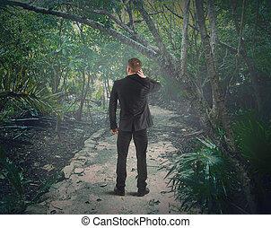forêt, perdu