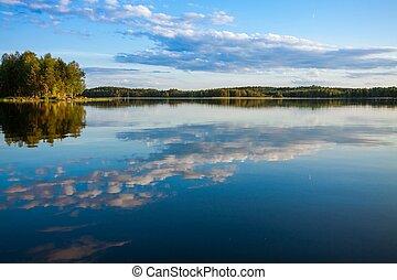 forêt, refléter, dans, lac