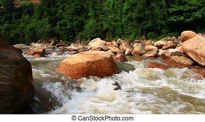 forêt, ruisseau, rochers, grand