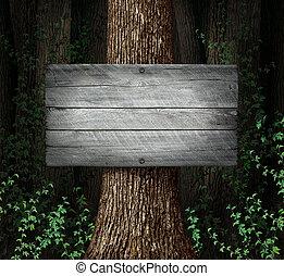 forêt, signe blanc