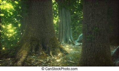 forêt, terrestre, mossed, primordial
